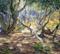Oak Grove Carmel - Guy Rose