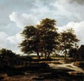Wooded Landscape with Cornfields 1655 60 - Jacob Van Ruisdael