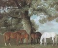 Mares and foals beneath a large oak tree - George Townley Stubbs