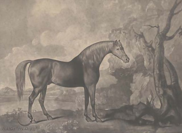 Brown horse mask, by George Townly Stubbs - George Stubbs