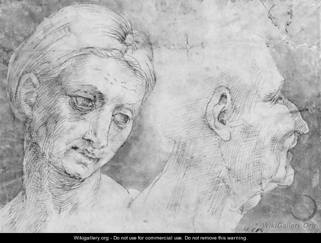 The heads of a woman and a man - (after) Bartolomeo Bandinelli