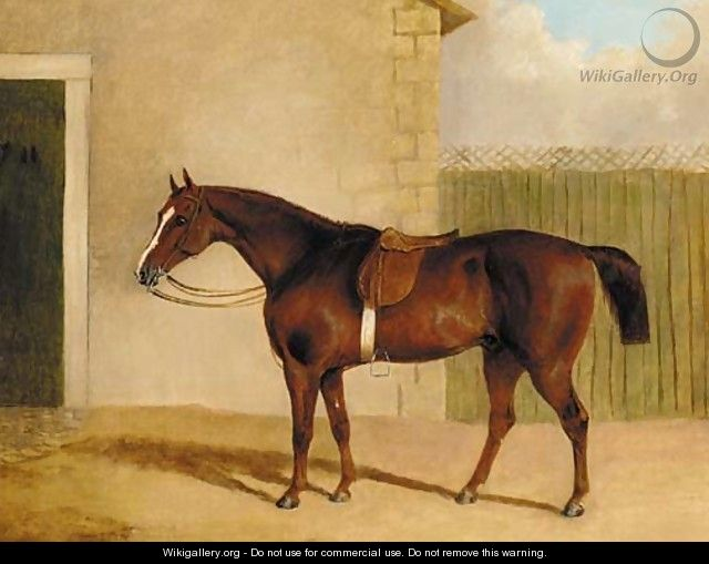 A saddled brown hunter by a stable - (after) Albert Clark