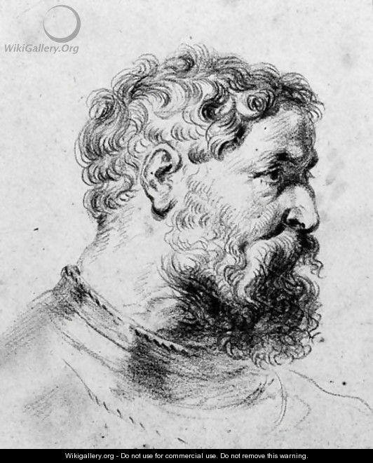 Head of a bearded soldier turned to the right, after Sir Peter Paul Rubens - (after) Watteau, Jean Antoine