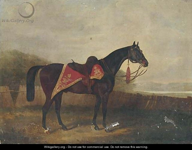 A horse with ornate sadle cloth - (after) Samuel Spode