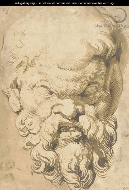Head of a Satyr - (after) Rubens, Peter Paul