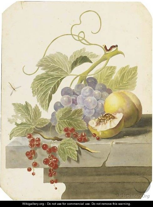 Still life with grapes, peaches and red currants on a ledge - (after) Willem Van Leen