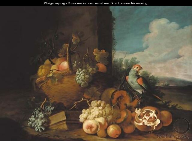A basket of grapes - (after) Tobias Stranover