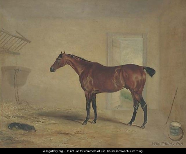 A bay hunter in a stable - (after) John Snr Ferneley
