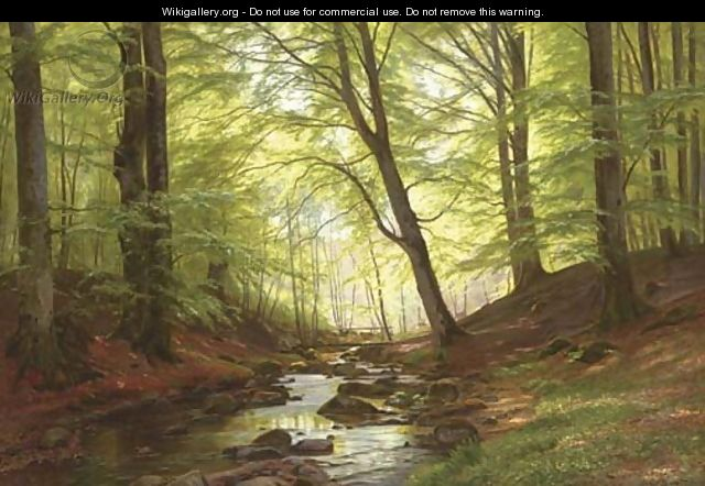 A Stream in a Forest - Christian Zacho