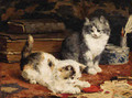 Kittens at Play 2 - Charles van den Eycken