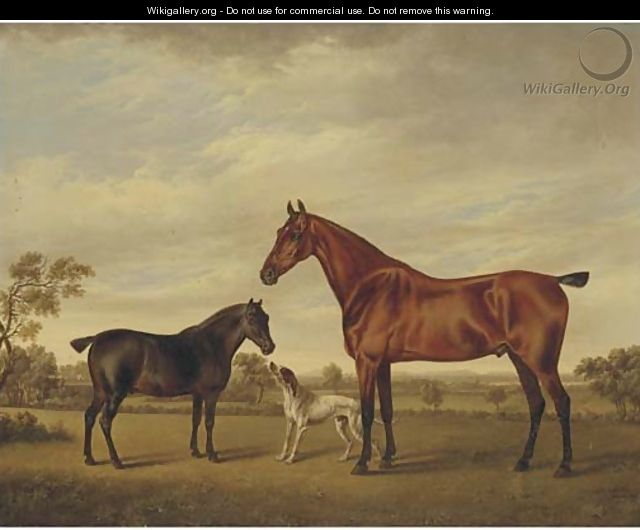 A horse and foal with a hound in a landscape - Charles Towne