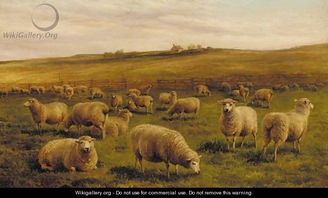 Sheep grazing with a cottage beyond - Charles Jones
