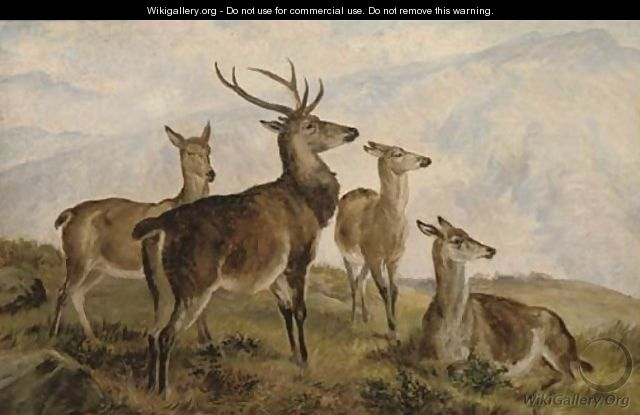 Deer in the highlands - Charles Jones