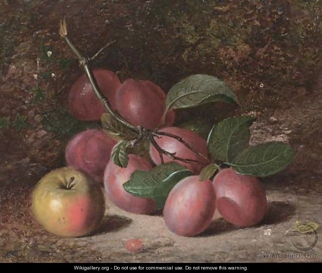 Plums and an apple, on a mossy bank - Charles Archer