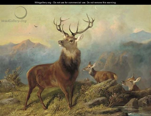 A stag and hinds in a landscape - Byron Webb