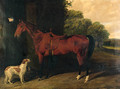 A Saddled bay Hunter, with dogs outside a stable - Byron Webb