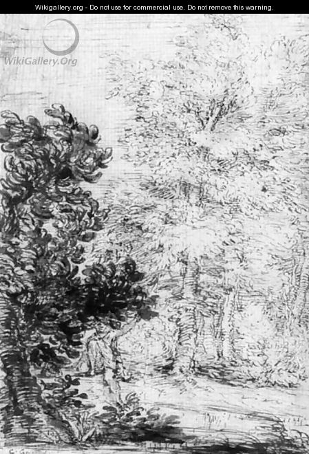 A wooded landscape with a fisherman - Bolognese School