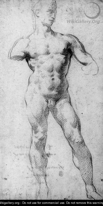 A nude in the pose of Michelangelo