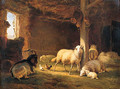 Sheep, Chicken and a Goat in a Barn - Eugène Verboeckhoven