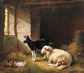 A Ewe, a Goat, a Rabbit and a Duck in a Barn - Eugène Verboeckhoven
