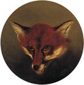 The head of a fox - English School
