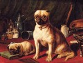 Pugs in an Interior - English School