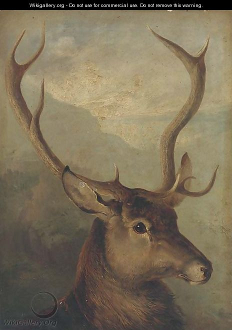 The head of a stag - English School