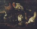 A rooster, chickens, pigeons and a hare outside a stable in a landscape - (after) Jacomo (or Victor, Jacobus) Victors