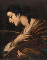 Saint Catherine of Alexandria - (after) Baldassarre Franceschini
