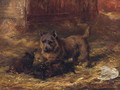 Puppies Playing - David George Steell
