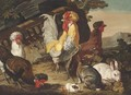 Chickens, rabbits and a guinea-pig by classical ruins - David de Coninck
