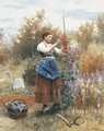 Tying up the Hollyhocks - Daniel Ridgway Knight