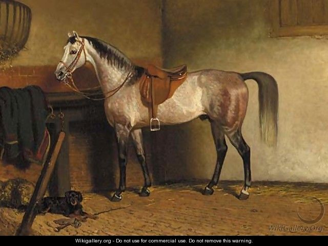 A saddled grey horse in a stable - Cornelis Albertus Johannes Schermer