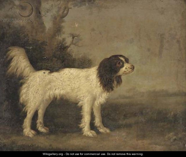 A springer spaniel in a landscape - English School
