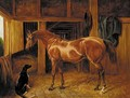 A chestnut hunter with a dog in a stable - English School