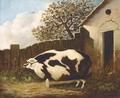 A sow in a farmyard - English Provincial School