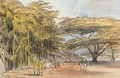 View of Ratnapura, Ceylon - Edward Lear
