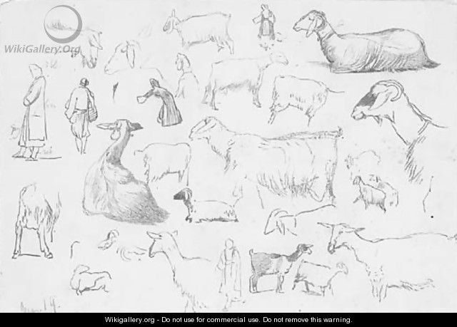 Studies of sheep and herdsmen - Edward Lear