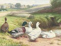 Ducks by a pond - Edward Brice Stanley Montefiore