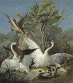Swans And Ducks Attacked By An Eagle - (after) Jacques Charles Oudry