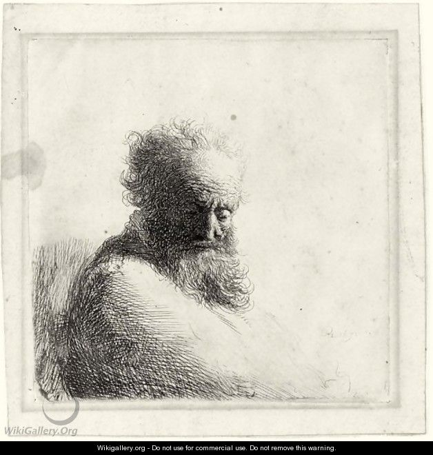 Bust Of An Old Bearded Man, Looking Down, Three Quarters Right - Rembrandt Van Rijn