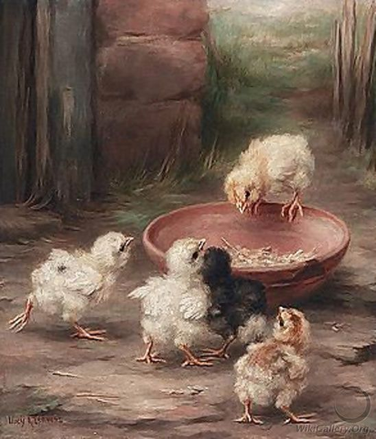 Chicks Feeding - Lucy Ann Leavers