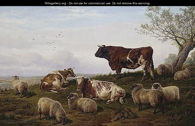 Cattle And Sheep Resting - Charles Jones