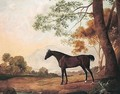 Lord Clermont's Bay Racehorse Johnny In A Landscape - John Best