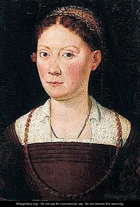 Portrait of a lady, half-length, wearing a brown dress - Sofonisba Anguissola