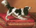 A Spaniel On An Embroidered Red Cushion - Jean Chappe