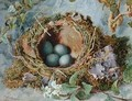 A Nest of Eggs - Jabez Bligh