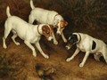Not At Home Cracknell, Olive And Jack Russell On A Ferret - Frank Paton