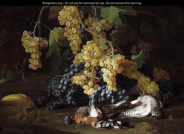 Still life of red and white grapes, together with a hoopoe - (after) Franz Werner Von Tamm