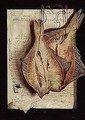 A trompe l'oeil of fish hanging before a letter - Dutch School